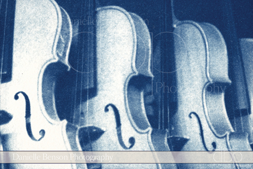 Cyanotypes Music Cello