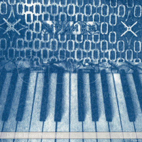 Cyanotypes Music Accordions